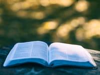 Qu'est-ce qu'on lit cet été?