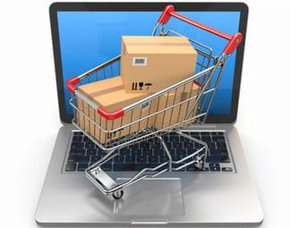 adapter son site d e commerce pour mieux vendre. Black Bedroom Furniture Sets. Home Design Ideas