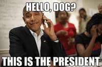 Obama, memes et gifs animés