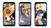 Snapchat créé des masques pour chiens