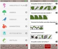 Ecobalade : l'appli pour découvrir la nature