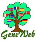 Geneweb 2020