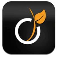 Viadeo : la gestion des profils améliorée sur les applications iOS et Android