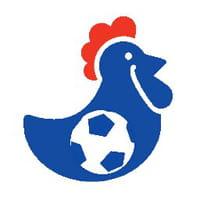Euro 2016 : organisez vos pronostics en entreprise grâce à Corporico