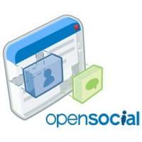 Viadeo : Ouverture  du réseau professionnel aux applications tierces