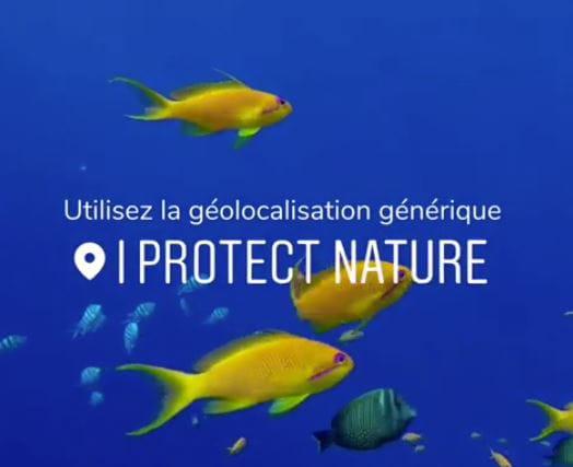 Pour protéger la nature, le WWF propose une fausse localisation sur Instagram
