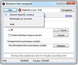 Télécharger Bandicam (gratuit)