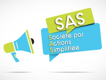 Sas Societe Par Actions Simplifiee Definition Et Statuts