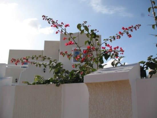 Je souhaite acheter en tunisie comment faire r solu for Je recherche maison acheter