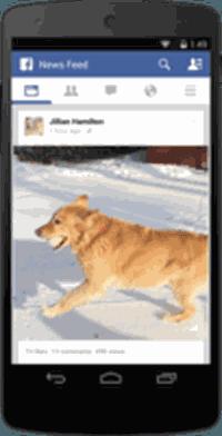Facebook affiche le nombre de vues des vidéos