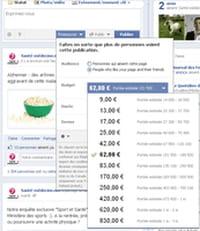 Publicité sur Facebook : comment fonctionnent les nouveaux « statuts » promus ?