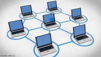 Fraude publicitaire, un réseau démantelé