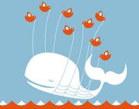 Twitter victime d'un bug ? (widgets-tweet_button.html.torrent)