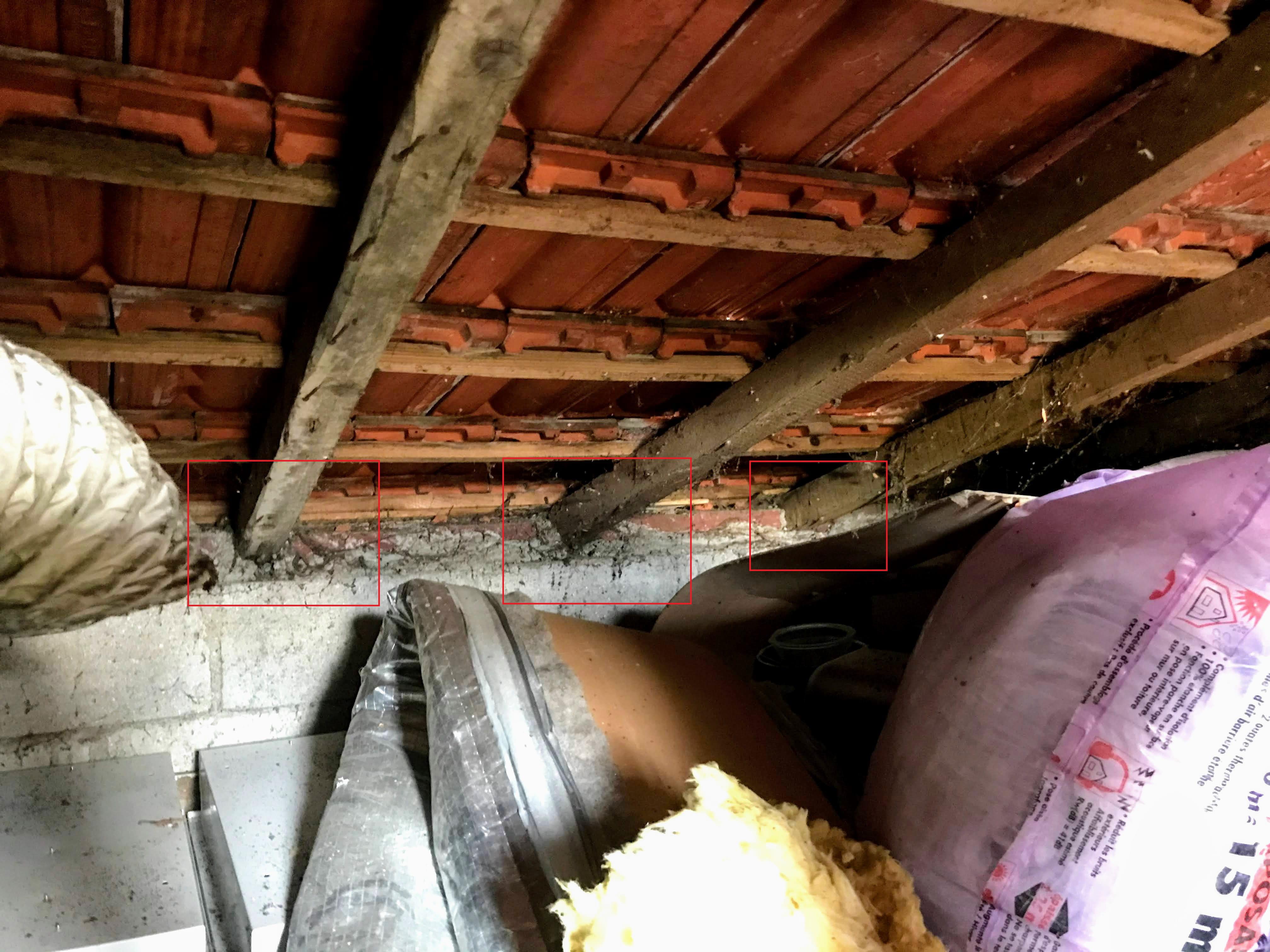 Rénovation toiture 1 pan - Linternaute.com