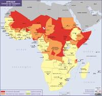 Ariane : le lien pendant vos déplacements à l'étranger