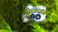 Pokémon GO : bientôt du coopératif ?