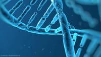 Microsoft bat le record du stockage sur ADN