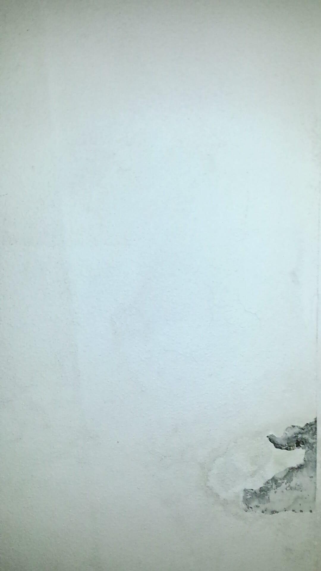 Probleme D'Humidite Dans Salle De Bain ~ repeindre plafond salle de bain avec probl me d humidit