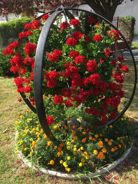 Faut il couper les g raniums avant de les rentrer pour l 39 hiver - Comment tailler les geraniums pour l hiver ...