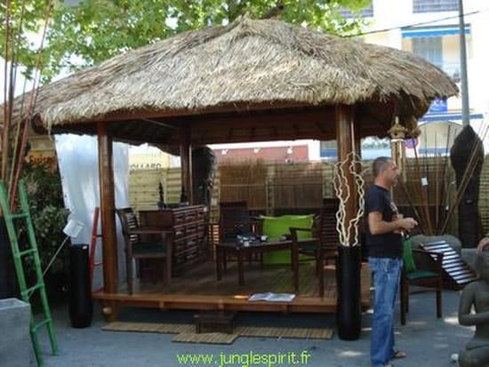 Je cherche un plan pour construire gazebo ou paillote en bois for Plan pour construire un bar en bois