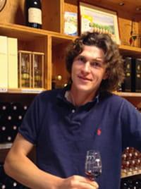 Avenue des vins : faire connaître son domaine viticole