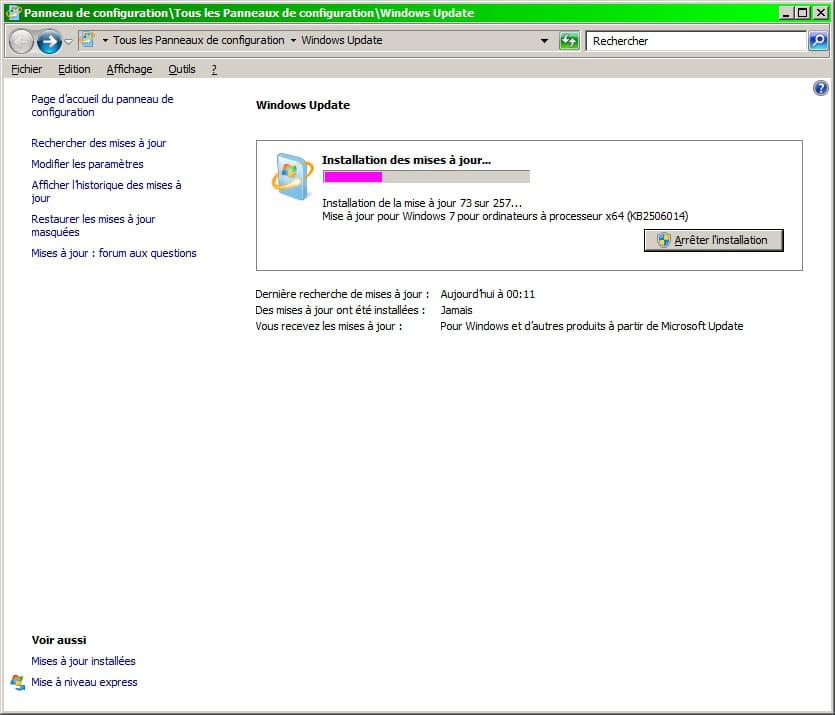 Energian Saasto—These Windows Update_dt0000