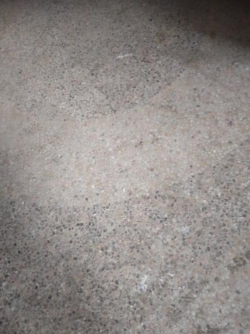 Restaurer Un Granito Terrazzo De 1873 Comment Forum Nettoyage