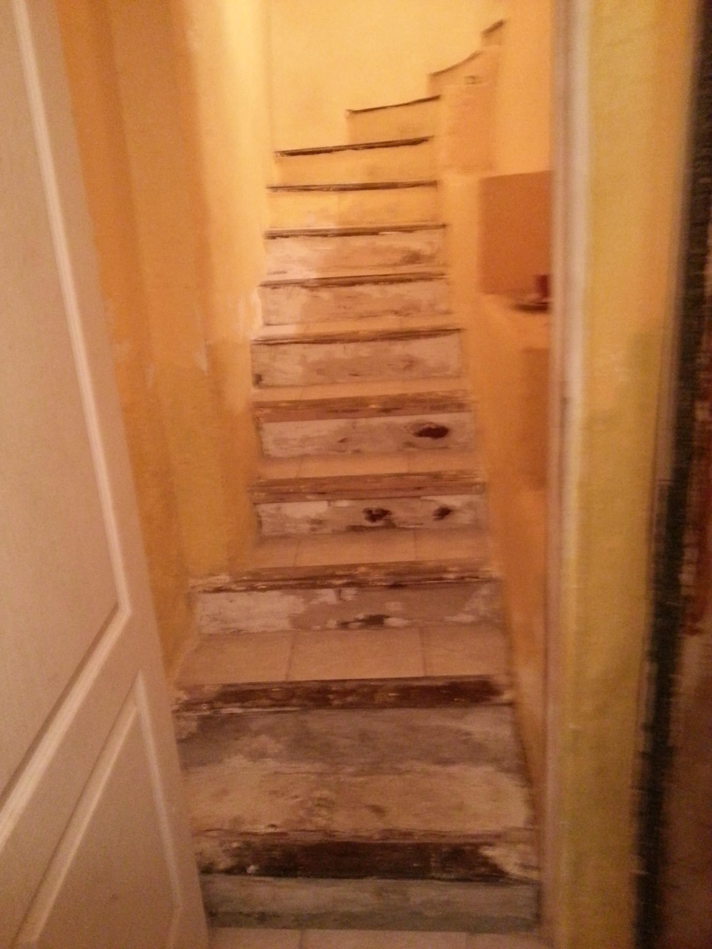 Comment Rénover Un Vieux Carrelage Au Sol renovation escaliers très abîmés [résolu] - linternaute