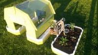 Le robot jardinier français qui a séduit Google